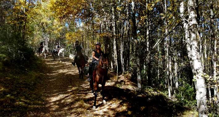 regreso_a_caballo_Luz_Gabas_03
